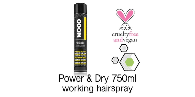 Power & Dry Hairspray 750ml