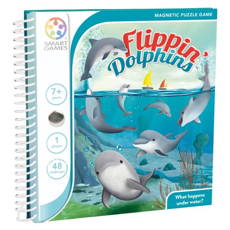 Magnetic travel Flippin' dolphins