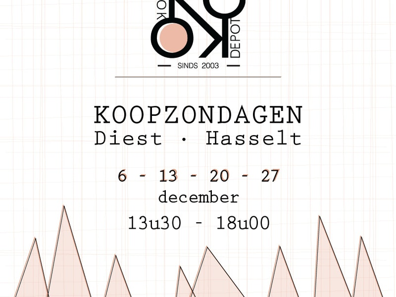 Zondagshoppen in december!